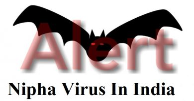 Nipha Virus In Indias